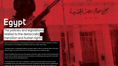 Photo of The policies and legislations related to the democratic transition and human rights – Egypt