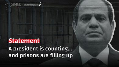 Photo of Statement on the reality of human rights in Egypt